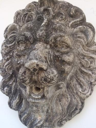 Stone lion's head